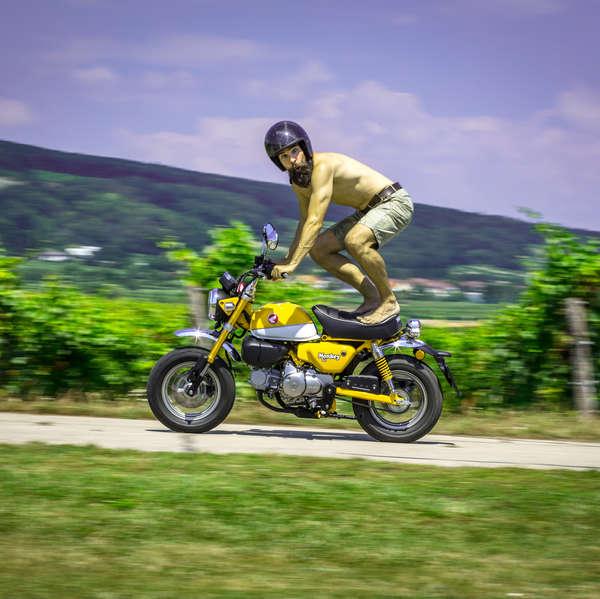 Platz 18: 179x Honda Monkey 125